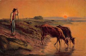 Shepherd Cows Dirnking Water River Painting Postcard