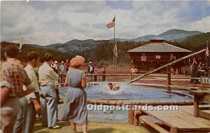 Frontier Town, New York, NY, USA Postcard Colonial ducking stool, Frontier To...