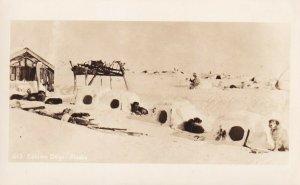 RP: ALASKA, 1910-20s; Eskimo Dogs by dog igloos