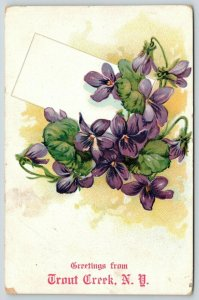Greetings from Trout Creek New York~Embossed African Violets~1907 Postcard