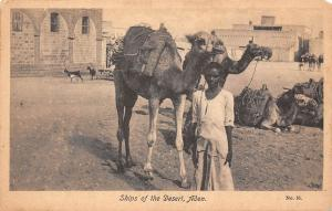 Yemen Aden Ships of the Desert, Camel Chameau
