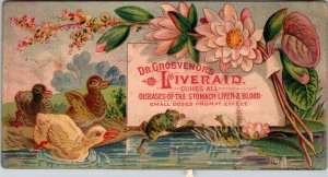 Victorian Trade Card Dr Grosvenor's Liveraid Pansy - FROG - THREE Ducklings