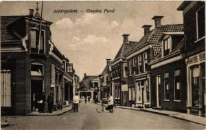 CPA APPINGEDAM Gouden Pand NETHERLANDS (706103)
