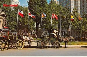 Canada Montreal Quebec Caleches Dominion Square Horse Carriage Ride