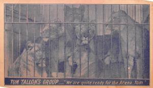 Tom Tallon's Group Animal Trainer Lion Tiger Act Unused