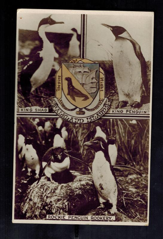 Mint Falkland Islands RPPC Real Picture Postcard Penguins