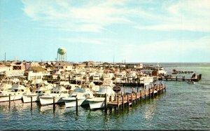 Maryland Ocean City Fishing Fleet