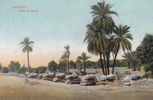 KARNAK, Egypt , 00-10s ; Avenue de Sphinx