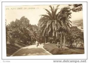 RP Monte Carlo, Les Jardines, 00-10s