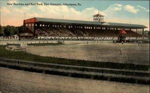 Allentown PA Baseball Game c1910 Postcard