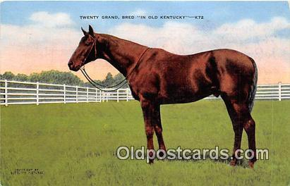 Horse Racing Postcard Post Card Kentucky, USA Twenty Grand, Bred Horse Racing...