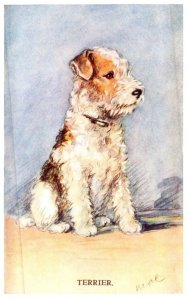 Dog , Terrier , artist signed mac