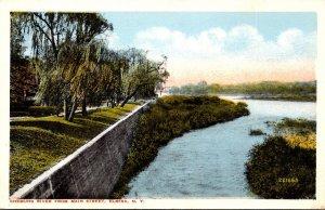 New York Elmira Chemung River From Main Street
