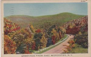 New York Greetings From East Worcester 1950 Curteich