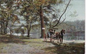Connecticut Norwich Horse and Carriage Southern End Of Lake Mohagan Park