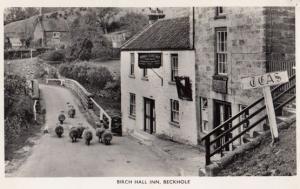 Birch Hall Inn Beckhole Sheep at Pub Vintage Yorkshire Real Photo Postcard