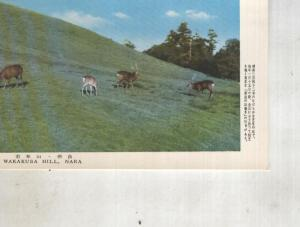Postal 014437: Wakakusa Hill, Nara