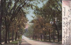 Looking Down James Street Hill - Syracuse NY, New York - pm 1905 - UDB
