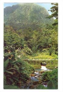 Martinique; Carbet peaks, la Riviere Blanche, 40-60s