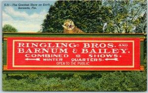 Sarasota, Florida Postcard Ringling Bros Barnum & Bailey Circus Winter / Tiger