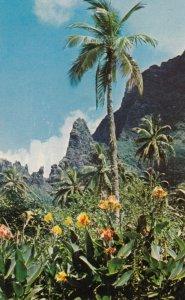 TAHITI , 1975 ; Island of Moorea