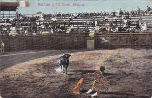 Bullfight At TIA JUANA, Mexico, 1900-10s