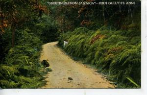 GREETINGS FROM JAMAICA FERN CULLY ST. ANNS VINTAGE POSTCARD