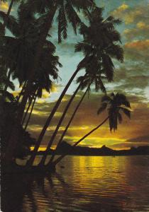 TAHITI, Tahitian Sunset, Palm Trees, PU-1969