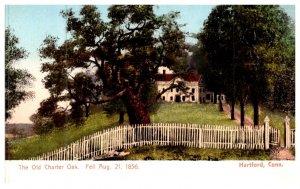 Connecticut Hartford ,  The Old Charter oak