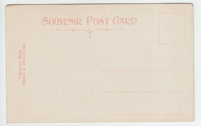 P1972 old valentine,s series postcard children of the mist cattle unused