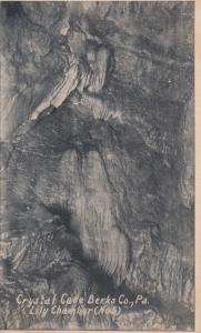 Crystal Cave , Berks Co. , Pennsylvania , 00-10s ; Lily Chamber (No.5)
