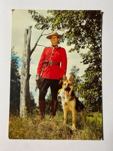 POSTED 1977 CANADA POSTCARD - GUARDIANS OF LAW MOUNTIE & ALSATION (KK963)