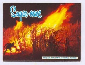 Sugar Cane Industry, Australia, 60s  Folder postcard TAA the Nation´s Jetline