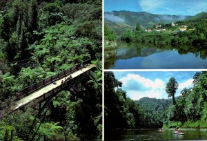 New Zealand North Island Wanganui River Showing Mangapurua Bridge Canoeing On...