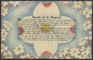 Legend of the Dogwood Postcard