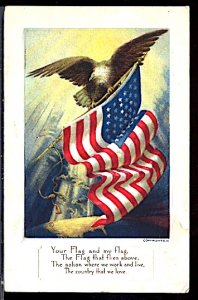 USA Patriotic With Flag Your Flag and My Flag Eagle Embossed CDS 1919