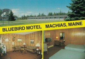 MACHIAS , Maine, 1950-70s; Bluebird Motel