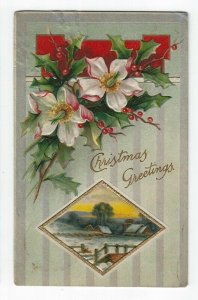 Christmas Greetings Postcard, A Winter Scene, Flowers, Holly & Berries, 1909