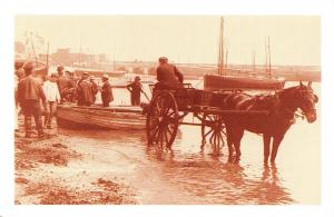Nostalgia Postcard 1903 St Ives Cornwall, Fishermen Unload Catch Repro Card NS21
