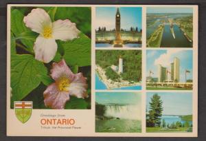 6 Views Of Ontario + Trillium Provincial Flower - Unused
