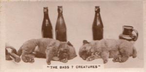 Dog Dogs Drunk On Bass Alcohol Beer Old Real Photo Cigarette Card