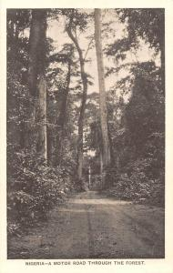 Nigeria, A Motor Road Through the Forest