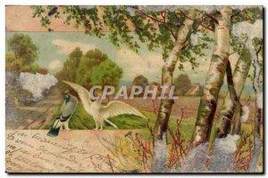 Old Postcard Fantasy Illustrator Birds