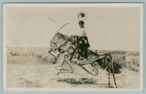 Ellis Kansas~Ride 'Em Cowboy~Exaggerated Grasshopper RPPC Conrad 1937