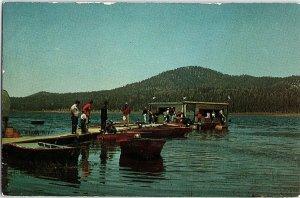 Chrome BUSINESS ACTIVITY Big Bear Lake California CA AH9724