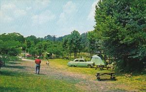 Kentucky Burnside Camping Area General Burnside State Park