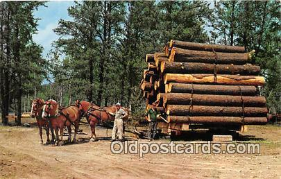 Hayward, Wisconsin, USA Postcard Post Card Four Horse Team, Load of Logs