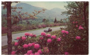 Postcard - Blue Ridge Parkway - Grandfather Mountain, North Carolina