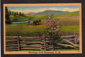 NH Greetings from BARNSTEAD NEW HAMPSHIRE PC Horse Plow