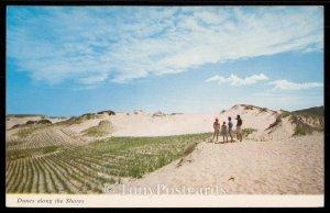 Dunes along the Shores